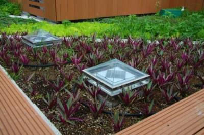 2014/10/09 屋頂綠化+絕對防水